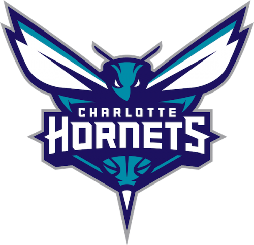 Charlotte Hornets players shoes